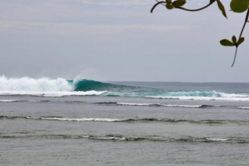 surf More? in krui south sumatra